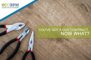 gov contract